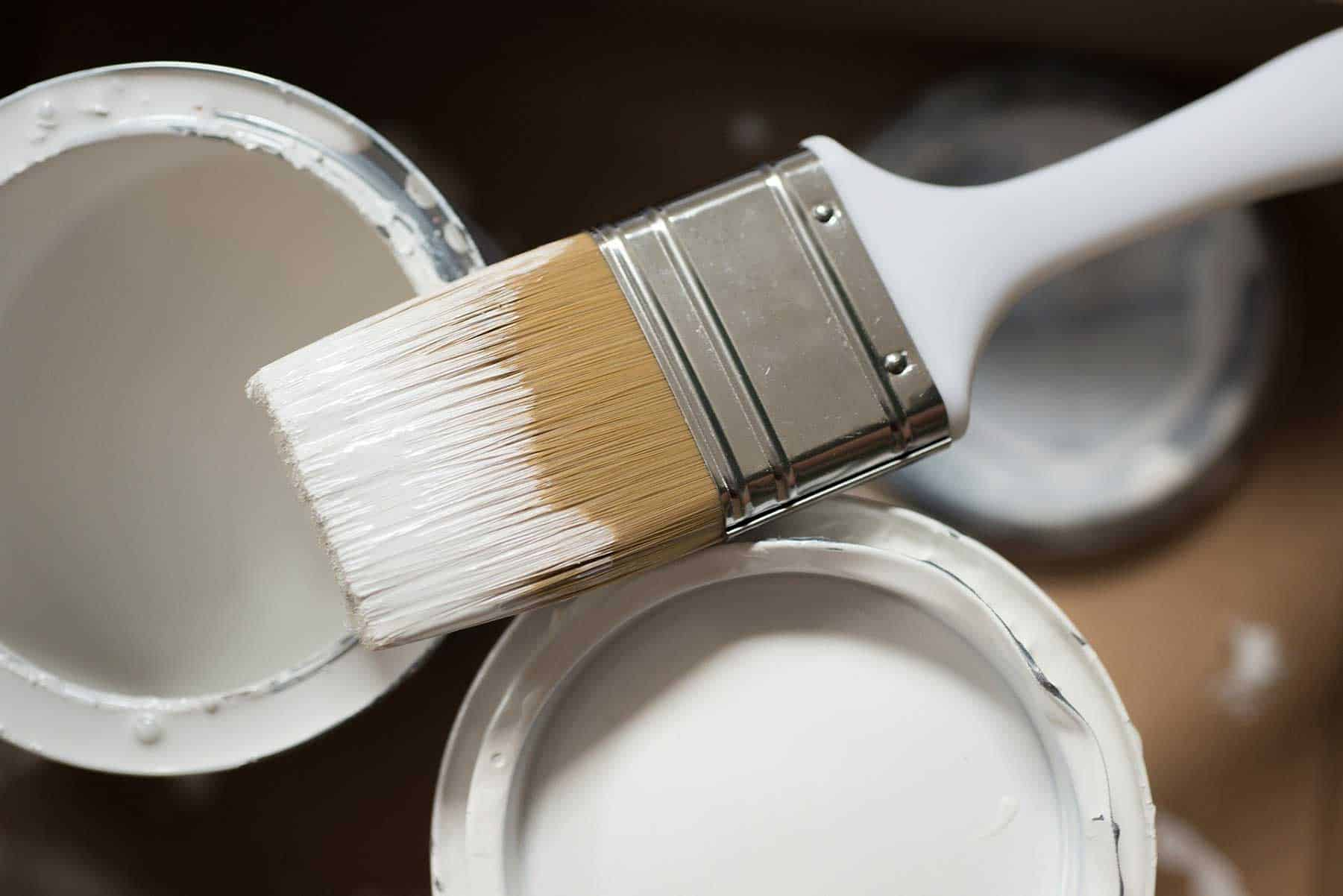 How to Start a Painting Business - Brushes