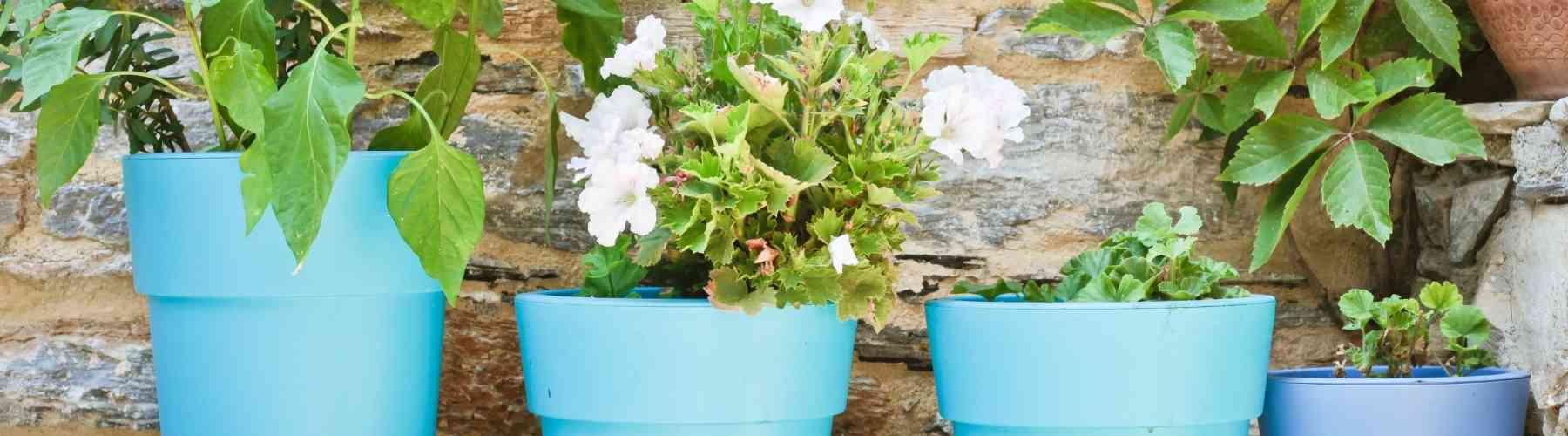 Crafts to Make and Sell - Plant Pots