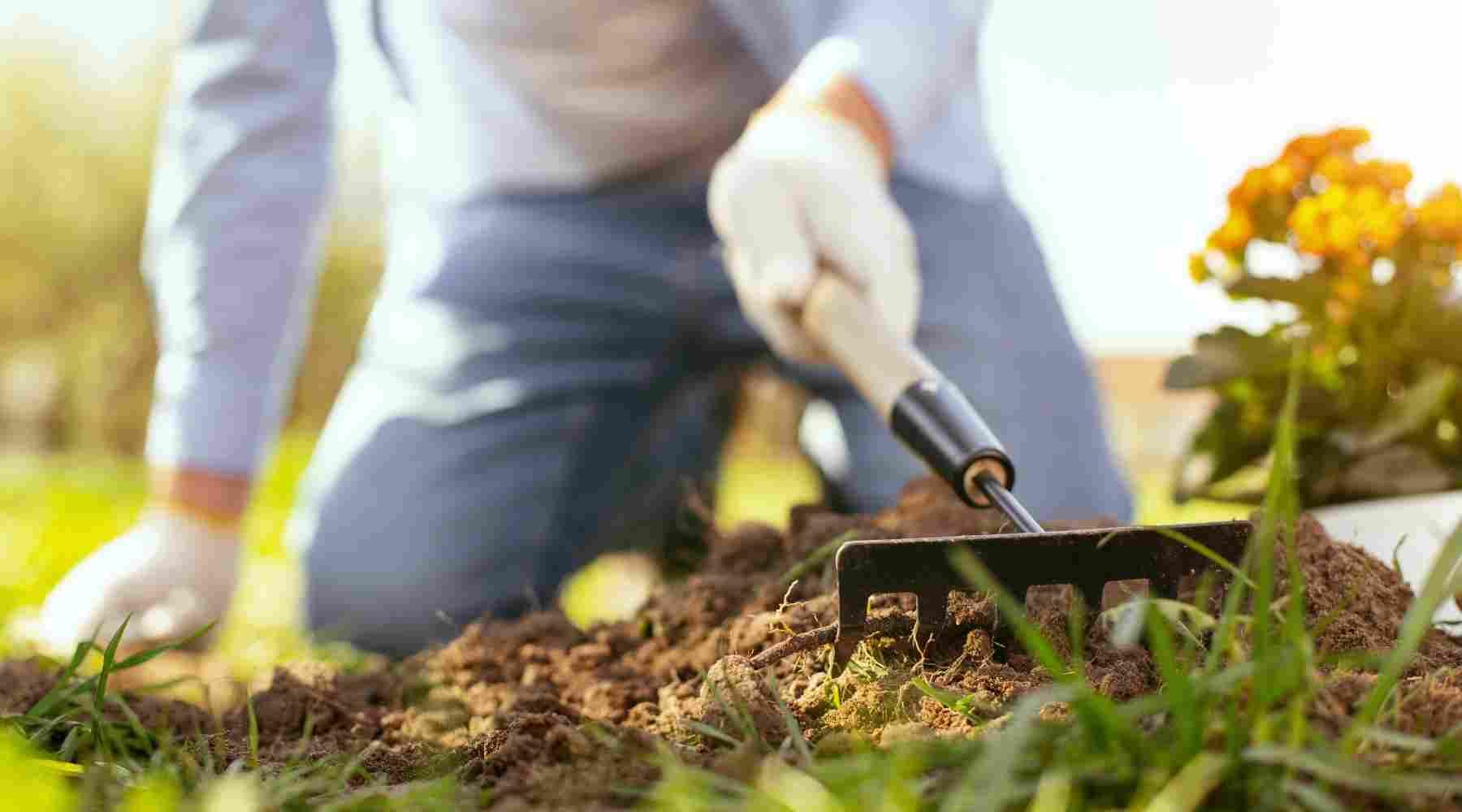 Hobbies that Make Money - Gardening